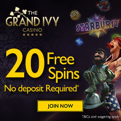 the ivy grand casino no deposit bonus codes