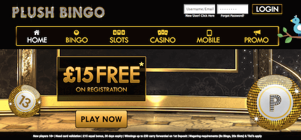 plush bingo room bonus no deposit